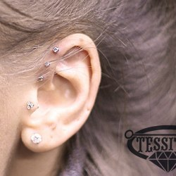 Triple forward helix piercing + Tragus piercing
